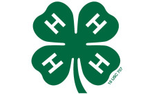 4H_GreenClover