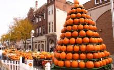 PumpkinShow
